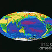 Satellite Image Of The Earths Biosphere Poster