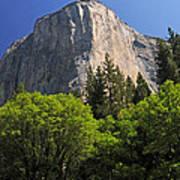Spring Views Of El Capitan Poster