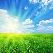 Sunny Spring Landscape Poster
