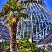 Tacoma Botanical Conservatory Poster