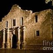 The Alamo At Night Poster