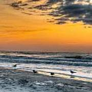 The Wintery Feeling Beach At Sunrise Poster