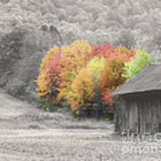 Tobacco Barn In Autumn Poster