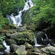 Torc Waterfall, Killarney National Poster