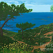 Torrey Pines Trails Poster