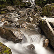 Unnamed Waterfall Along South Tongass Poster