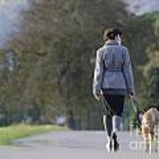 Woman Walking With Her Dogs Poster