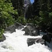 Yosemite National Park 2011 Poster