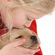 Young Girl With Yellow Labrador Poster