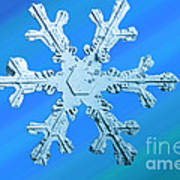 Snow Crystal Poster