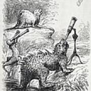 1861 Punch Dinosaurs & Comet Cartoon Poster