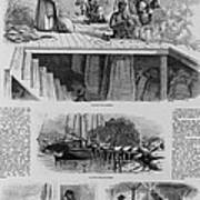 1869 Illustration Show Ex-slaves, Now Poster