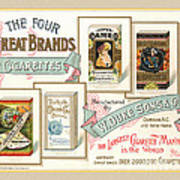 1889 W. Duke Sons Co Cigarettes Trading Card Poster