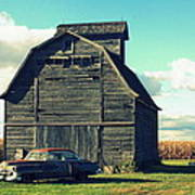 1950 Cadillac Barn Cornfield Poster