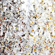 Birch Twigs In Autumn - Multiple Layers Poster