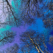 Epping Forest Art Poster