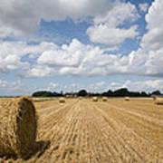 Harvest Time In France Poster
