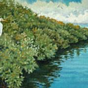 Mangroves 2 Poster