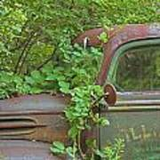 Overgrown Rusty Ford Pickup Truck Poster