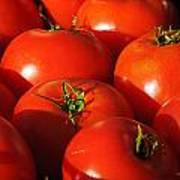 Ripe Tomatoes Poster