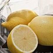 Still Life Of Bottles  And Lemons Poster
