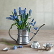 Still Life With Grape Hyacinths Poster