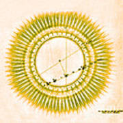 Transit Of Venus, 1761 Poster by Science Source