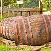 Wooden Barrels Poster
