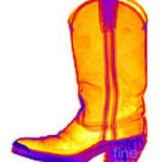 X-ray Of A Cowboy Boot Poster