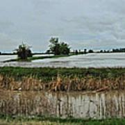 2011 Flood Poster