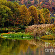 Autumn Big Ditch Lake Poster