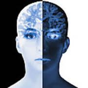 Brain Scan Poster
