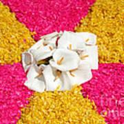 Flower Carpet Poster