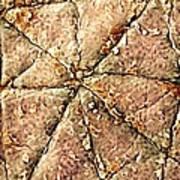 Human Skin Surface, Sem Poster