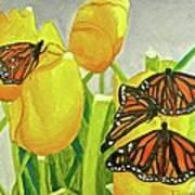 4 Butterflies Poster