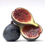 Figs Poster by Bernard Jaubert