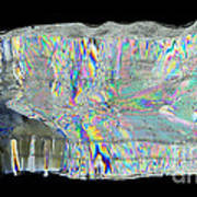 Icicle Cross Section Poster