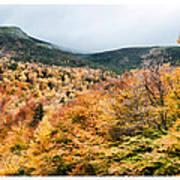 White Mountain's Gold Poster