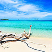 Tropical Beach Malcapuya Poster