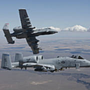 Two A-10 Thunderbolts Fly Poster