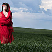 Woman In Red Series Poster