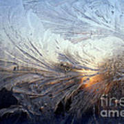 Frost On A Windowpane Poster