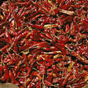 A Burlap Bag Full Of Red Hot Peppers Poster by James P. Blair