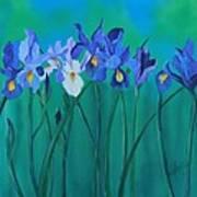 A Clutch Of Irises Poster