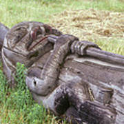 A Fallen Wooden Totem Pole Lies Poster
