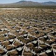 A Field Of Military Planes Poster