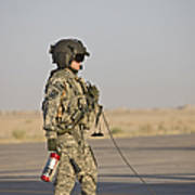 A Flight Crew Member Stands Poster