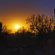 A Golden Saguaro Sunrise Poster