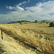 A Hay Field With Bales Sitting Poster