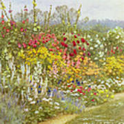 A Herbaceous Border Poster